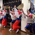 写真: 阿波踊り