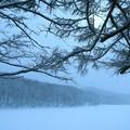 Photos: 雪降る公園へ