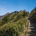 Photos: 石鎚へ