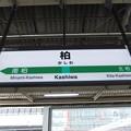 柏駅 駅名標【常磐緩行線 上り】