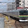 宇都宮線E231系1000番台 U539+U20編成