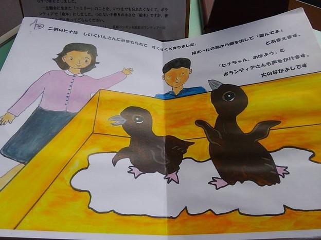 20170314 長崎ペンギン水族館 17