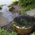 名勝 養浩館庭園 3