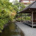 名勝 養浩館庭園 6