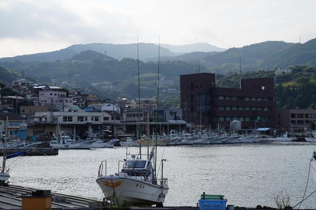 稲取の漁港