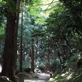 Photos: 五合庵への道