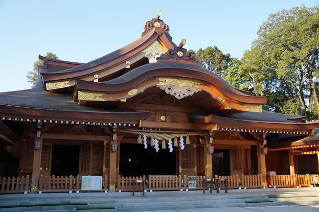 Photos: 亀ヶ池八幡宮
