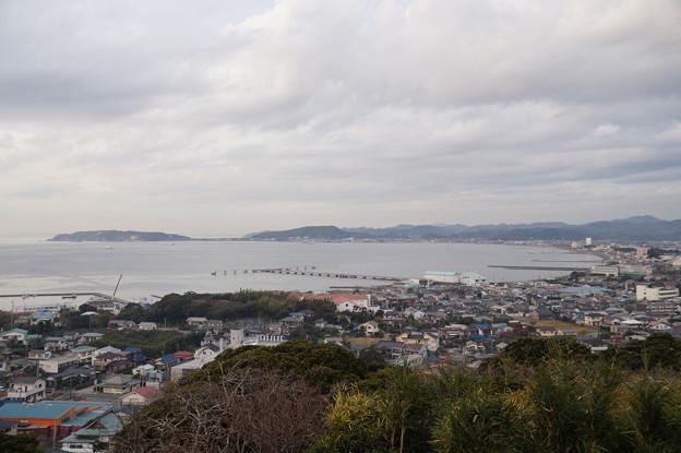 館山湾を望む