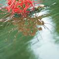 Photos: 水鏡..3