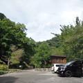 Photos: 河津オートキャンプ場015