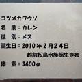 Photos: joetsu120707005