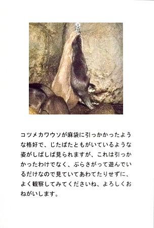 higashiyama110212056