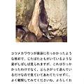 写真: higashiyama110212056