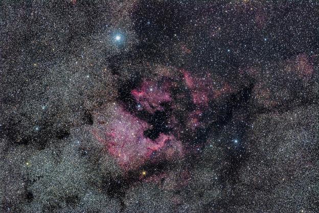 NGC7000_2016.06.03