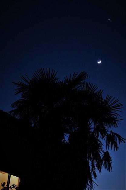 輝く光は・・月と金星  H29:01:31