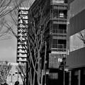 Photos: つくばで見つけたビル3態・・・1 直線