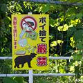 写真: 石川県小松市、獣害関連看板