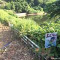 Photos: 若山町ため池