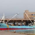 写真: 市場横着けの超大型漁船