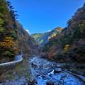 Photos: 秋のみたらい渓谷