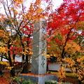 禅林寺 永観堂
