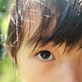 Photos: まなざし