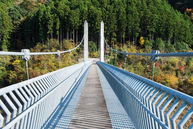 南アルプス接岨大吊橋