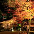 Photos: 宝満宮竈門神社 紅葉ライトアップ 3