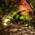 Photos: 宝満宮竈門神社 紅葉ライトアップ 4