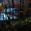 写真: 光射す:船形連峰桑沼の秋