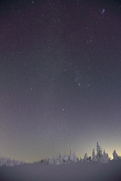 樹氷原に聳える冬の銀河