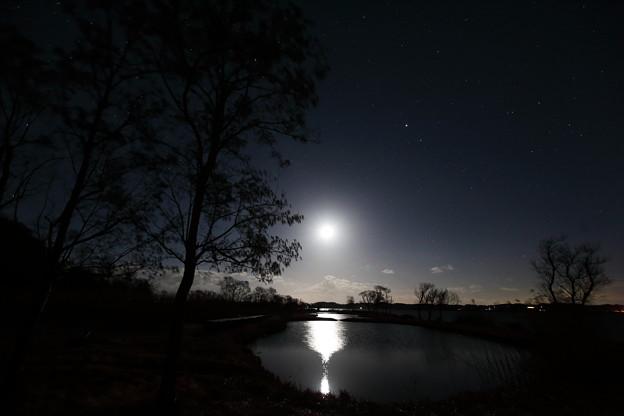 写真: 月への道