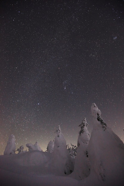 樹氷と冬の星座たち