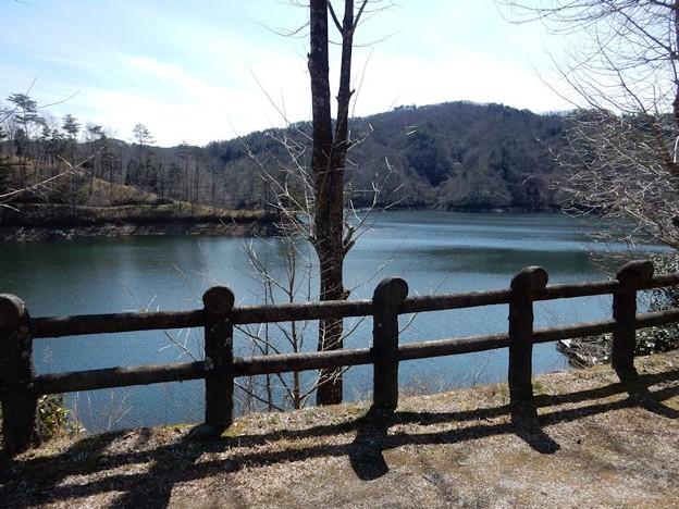 写真: DSCN1358 三河湖眺めて
