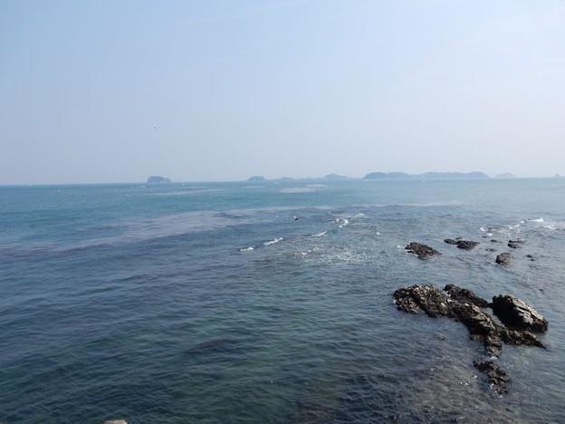 写真: DSCN1409 春海