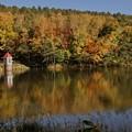 心霊スポットでも有名な、水源地の紅葉