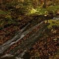 写真: 晩秋の流れ