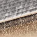 シトシト雨 2014.6.28
