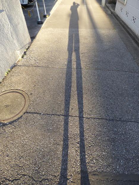 朝陽からの影にて…