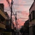 写真: 10月の夕焼け雲