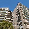写真: 青空の下のマンション