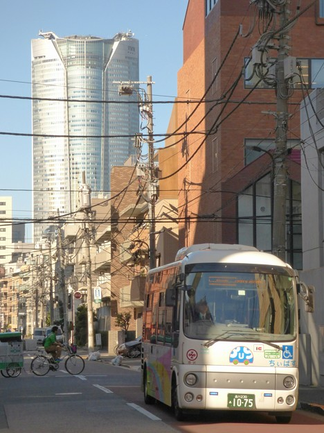閑静な朝の街を走る「麻布東ルート」