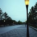写真: 201205-07-002PZ