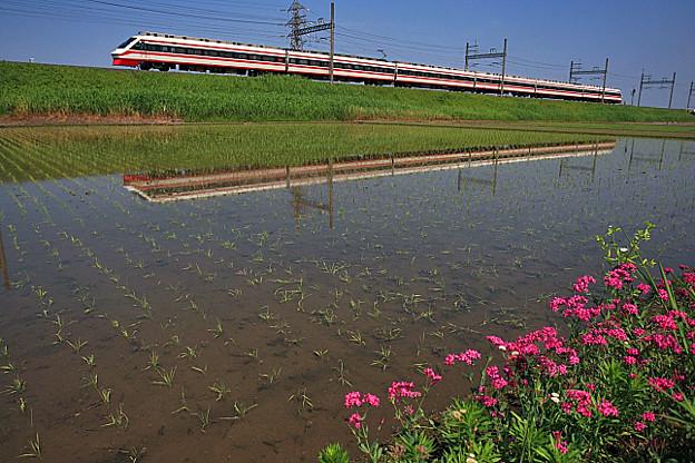 1816列車
