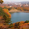 紅葉・城山湖