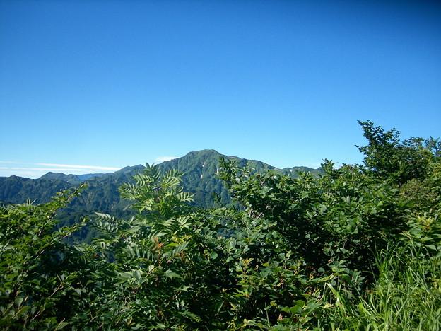 1801大笠山遠望赤摩木古山の先より