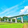 写真: 天空への架け橋(4)