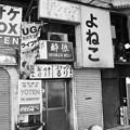 Photos: よねこ