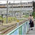 貨物線が見える駅