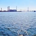 Photos: キラキラ運河